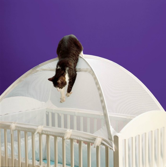 How To Keep Cat Out Of Crib