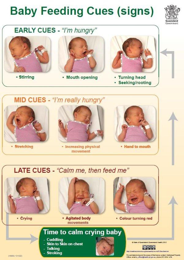 baby-feeding-cues1