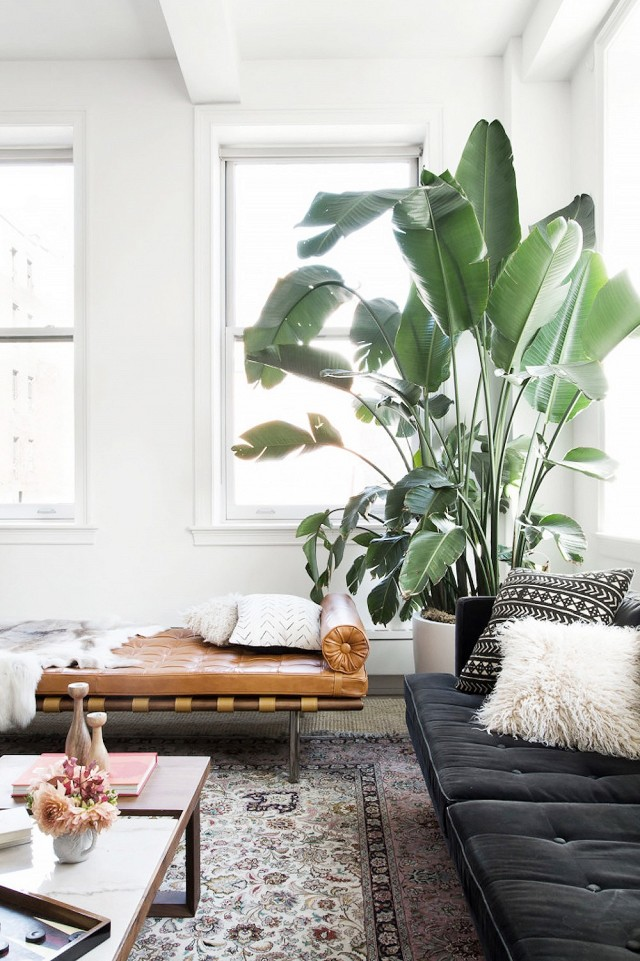 5 simple things that will make your home a place to relax   Her.ie