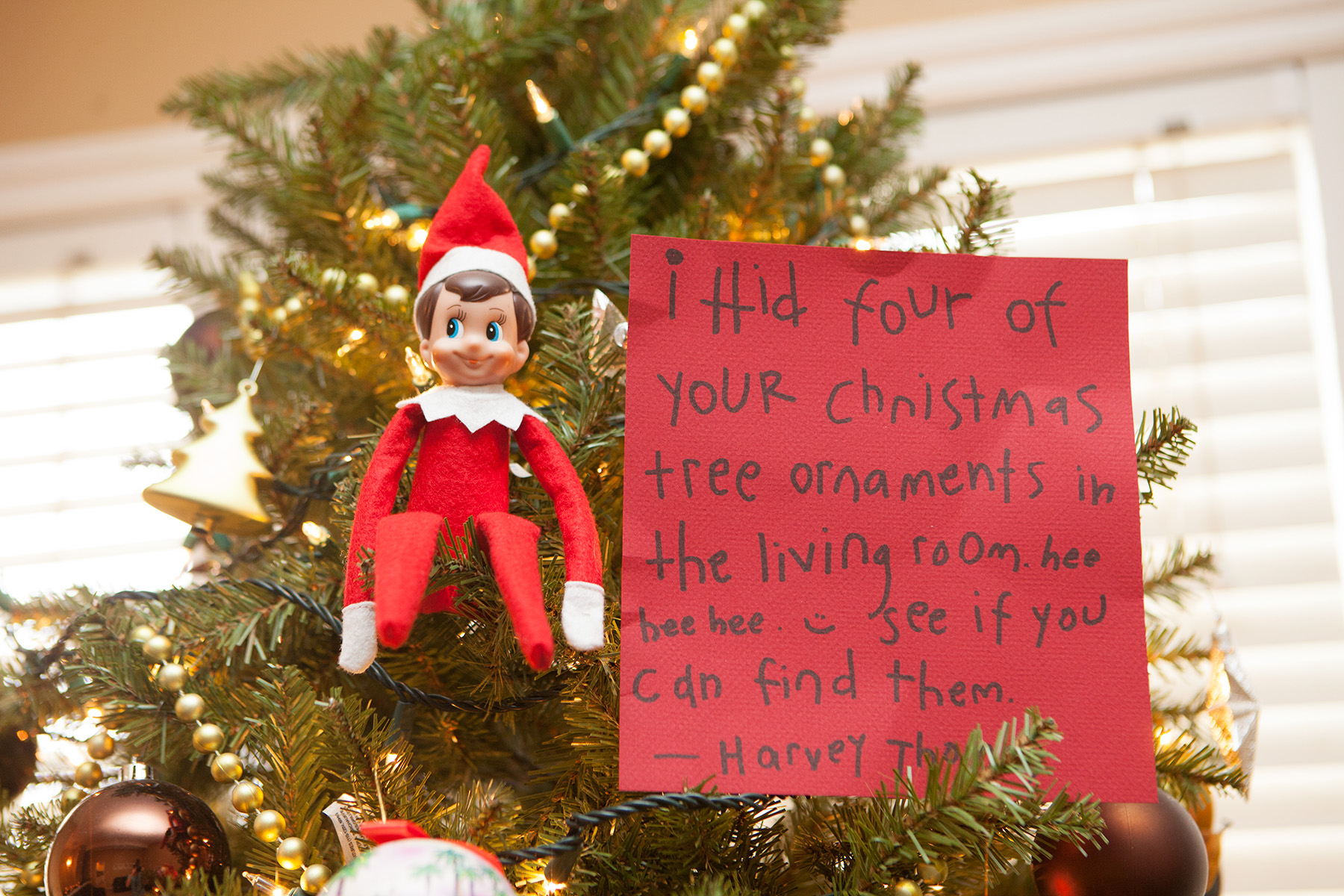 This Expert Claims Elf On The Shelf Is Actually Pretty Bad